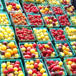 Field of cherry tomatoes! yum farmersmarket